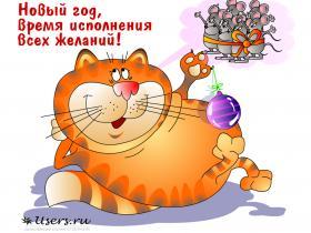 Новогодние мечты кота
